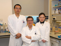"(From Left) Dr Bin Yu, Post-doctoral fellow, Professor Jiandong Huang, Professor, and Dr Lei Shi, Research Assistant of School of Biomedical Sciences, Li Ka Shing Faculty of Medicine, HKU successfully converted Salmonella into an anaerobe bacterium ""YB1"" which can suppress tumour growth."