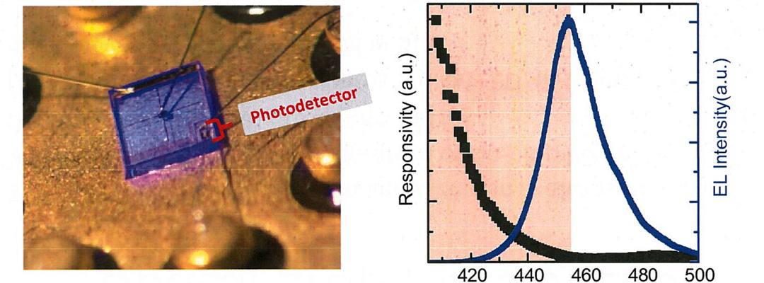 LEDs with Monolithically-Integrated Photodetectors for In-situ Real-Time Intensity Monitoring